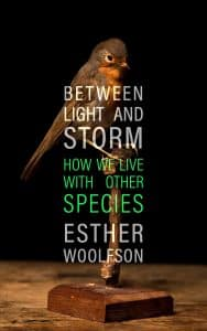 Book cover for Between Light and Storm by Esther Woolfson