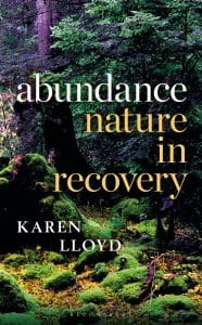 book cover of Abundance by Karen Lloyd